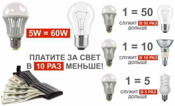Светодиодные источники света долговечнее и экономичнее ламп накаливания